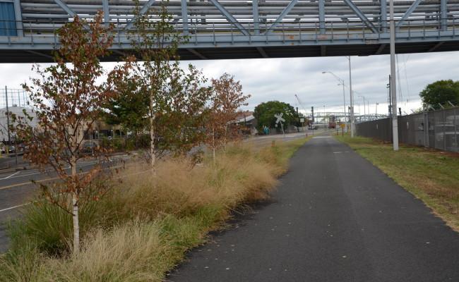 Delaware Avenue Trail 1